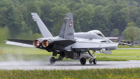 Swiss Hornet Stock Photography