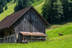 Swiss house with  farm Royalty Free Stock Images