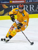 Swiss Ice Hockey LNA Royalty Free Stock Image