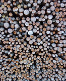 Swiss Kindling Wood stack Royalty Free Stock Photos
