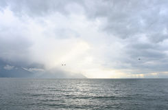 Swiss lake Leman Stock Photography