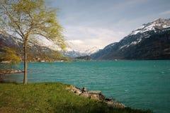 Swiss lake scene Stock Photo