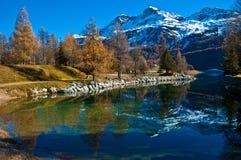 Swiss Lake Silvaplana. Autumn reflections on the lake Silvaplana royalty free stock photos