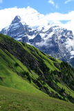 Swiss landscape. With meadows and high mountains Stock Image