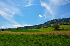 Swiss landscape countryside during spring Royalty Free Stock Image