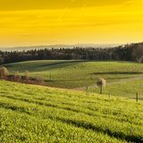 Swiss landscape early in the morning. Swiss landscape with forests and meadow early in the morning. Agriculture in Switzerland, arable land and pastures Royalty Free Stock Image