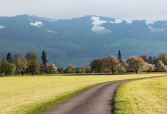 Swiss landscape. Fantastic Swiss landscape near Zurich on the border with Germany Royalty Free Stock Photo