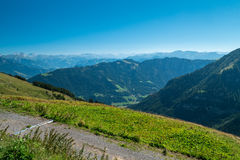 Swiss landscape with flowers. A Swiss landscape with massive mountains in the background Royalty Free Stock Photo