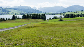 Swiss landscape and lake Sihl Royalty Free Stock Image