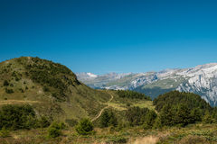 Swiss landscape with mountains. A landscape taken in switzerland showing the mountains and forest Stock Photos