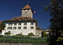 Swiss medieval castle, Spiez Switzerland. The Swiss medieval castle of Spiez, Switzerland. Castle vineyard royalty free stock image