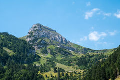 Swiss mountain peak. A Swiss mountain peak surrounded by forest Royalty Free Stock Photography