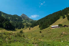 Swiss mountain peak. A Swiss mountain peak surrounded by forest Royalty Free Stock Images