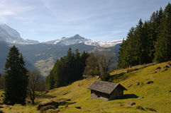 Swiss mountain scenic Royalty Free Stock Images