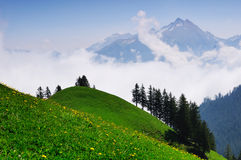 Swiss mountains in the morning Stock Photography