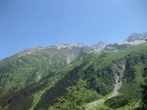 Swiss mountains surrounded by forest in summer royalty free stock photo
