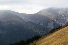 Swiss National Park Stock Photos