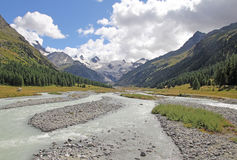 Swiss nature Royalty Free Stock Photography