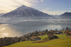 Swiss panorama in Thun in winter Royalty Free Stock Images