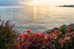 Swiss riviera Stock Photography
