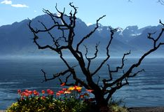 Swiss Riviera, Montreux Royalty Free Stock Photography
