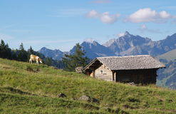 Swiss rural landscape Royalty Free Stock Photography