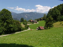 Swiss Summer Pastoral Scene. Landscape pastoral scene shot in summertime near Wilderswil, Switzerland Royalty Free Stock Photos