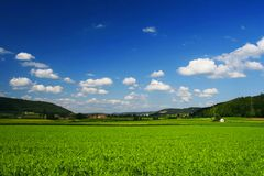 SWISS SUNNY FIELDS,  SWITZERLAND Royalty Free Stock Photos