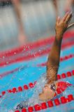 Swiss Swimming Championships Stock Images