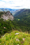 Swiss valley in summer Stock Images