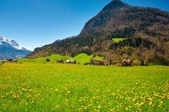 Swiss Village Stock Image