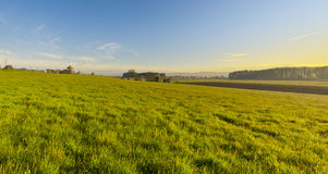 Swiss village surrounded by pastures. Swiss village surrounded by forests and plowed fields at sunset. Agriculture in Switzerland, arable land and pastures Stock Image