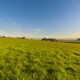Swiss village surrounded by pastures. Swiss village surrounded by forests and plowed fields at sunset. Agriculture in Switzerland, arable land and pastures Royalty Free Stock Photos