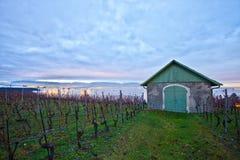 Swiss vineyard at dawn. A wooden hut at a Swiss vineyard at dawn Stock Photo