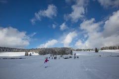 Swiss Winter Landscape III Royalty Free Stock Photography