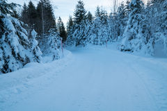 Swiss Winter - Road covered in snow royalty free stock photos
