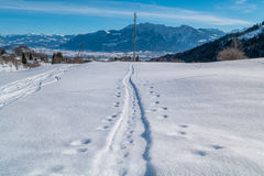 Swiss Winter - Tracks in snow Stock Photography