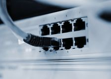Switch with networking cable Royalty Free Stock Photos