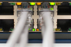 Switch Ports online. A Ethernet Network Switch with power and link close up Royalty Free Stock Photography