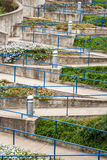 Switchback walkway. A walkway without steps switchbacks along a floral lanscape. A blue rail highlights the diagonal patterns Royalty Free Stock Photography