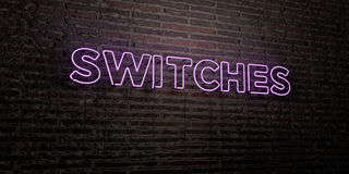 SWITCHES -Realistic Neon Sign on Brick Wall background - 3D rendered royalty free stock image Stock Photos
