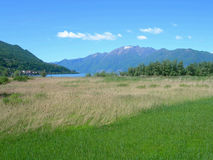 Switss Alps and meadows. Switzerland Alps and meadows on a clear day with blue skies forests and meadows stock photo