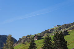 Switzerland, Grisons, Alps, Vals Valley, mountain pasture Royalty Free Stock Photos