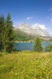 Switzerland landscape around Sils Llake Royalty Free Stock Photo
