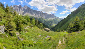 Switzerland mountains in summer Royalty Free Stock Images