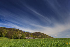 Switzerland. Panoramic view of beautiful mountain landscape iwith green mountain pastures with flowers and mountains in the background in springtime Stock Photography