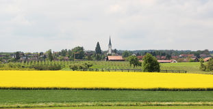 Switzerland in the spring. The Swiss village and a vineyard in the spring Stock Images