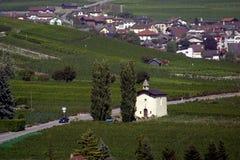 Switzerland, Valais, Evolene village. Switzerland, Valais, Evolene, the village and vineyard with church royalty free stock photography