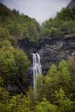 Switzerland, Valais, the fall on mountain. Switzerland, Valais, the fall on mountain and bush with tree royalty free stock photography