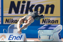SWM: Πρωτάθλημα παγκόσμιου Aquatics Στοκ εικόνα με δικαίωμα ελεύθερης χρήσης